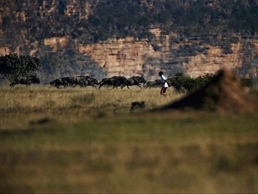 hardlopen-big-5-zuid-afrika