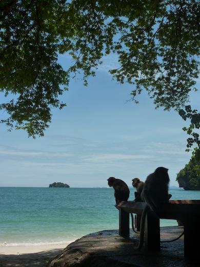 apen-railay-thailand